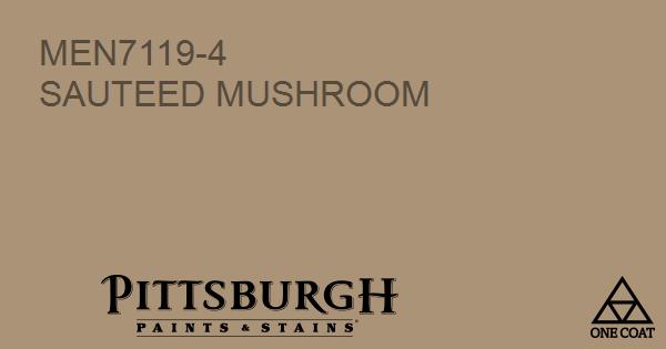 mushroom paint colorPaint Color  Sauteed Mushroom